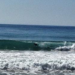 Ocean Feb 15